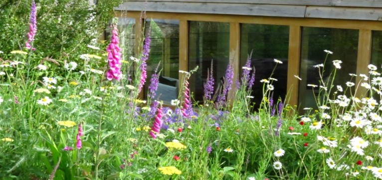 Self-Catering Accommodation Garden | Holiday Rental